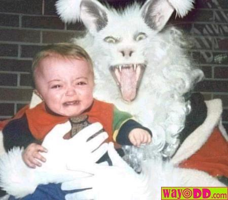 funny easter jokes. Pic2Face: funny easter sayings